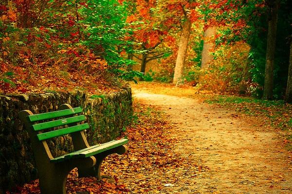 Fall New England