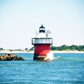 Whale Watching with Captain John – Plymouth MA