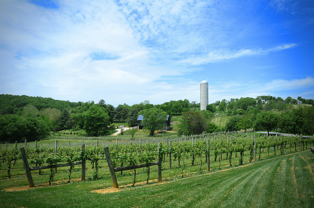 Weekend Getaways Virginia Wine Country