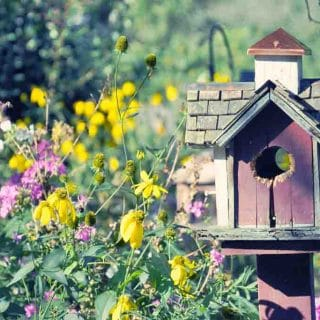 Enchanted Garden in Upstate New York