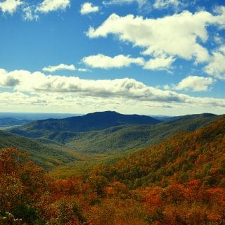 Visit Shenandoah National Park in the Fall