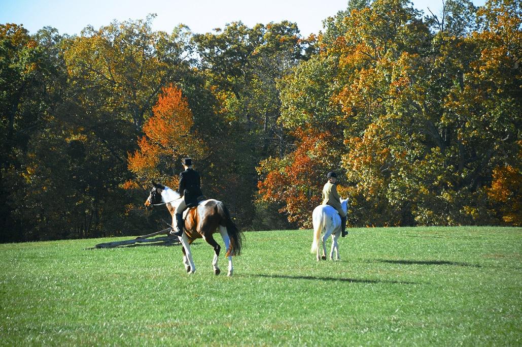 Horse & Hound Show in Mount Vernon