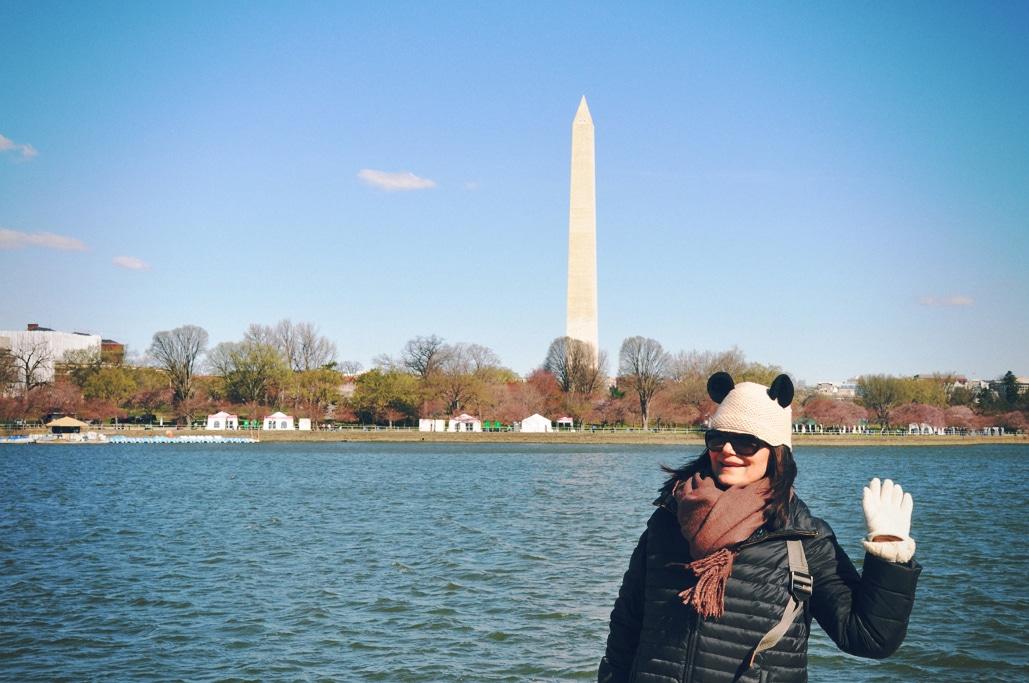 Cherry Blossoms Season in Washington, DC
