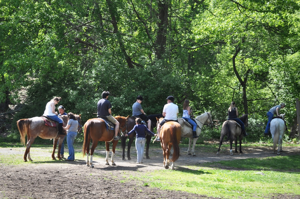 Horseback Riding in Rhode Island