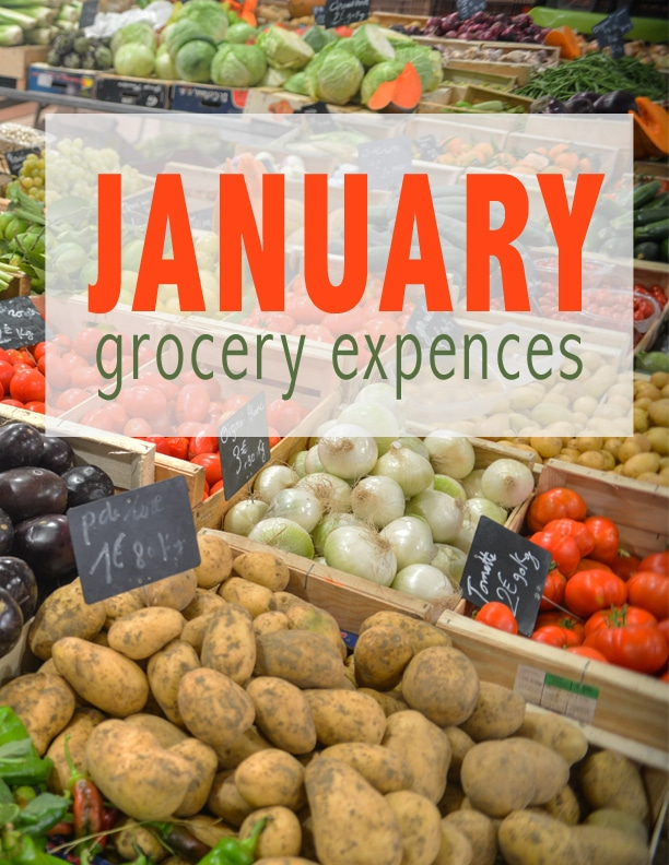 Grocery Expenses