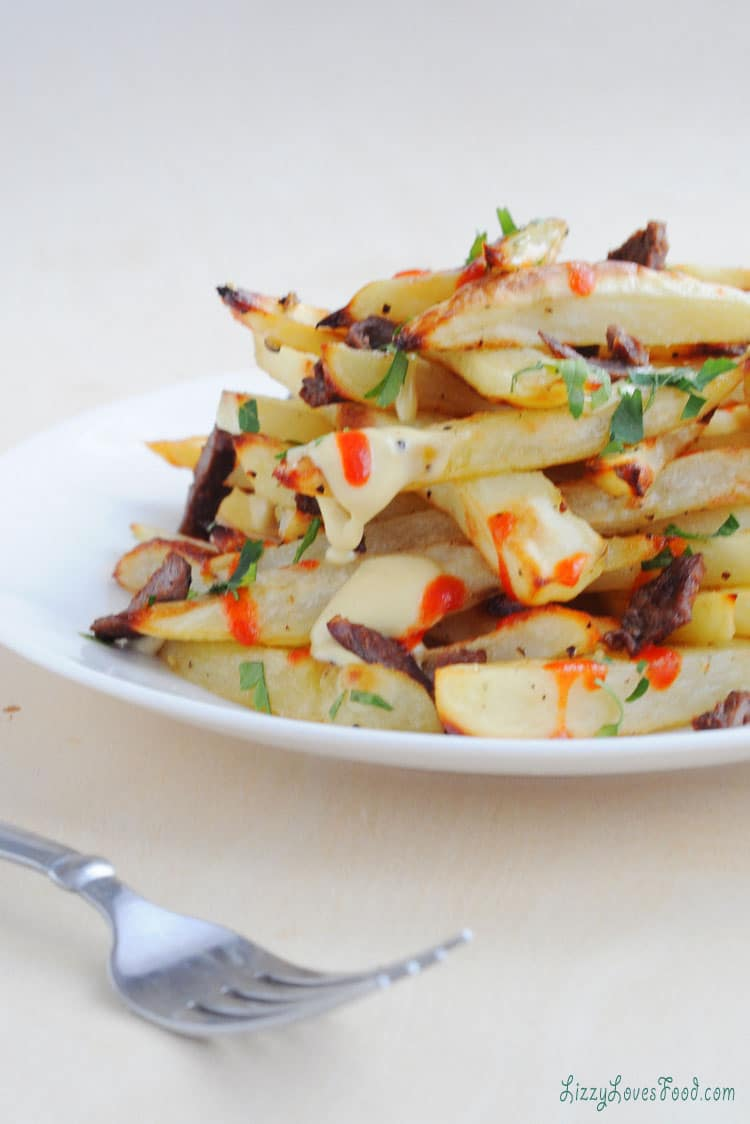 Belgium Baked French Fries